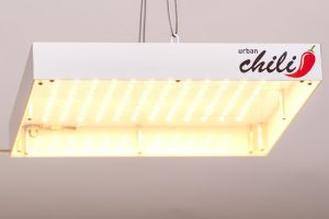 LED BOARD urban Chili on