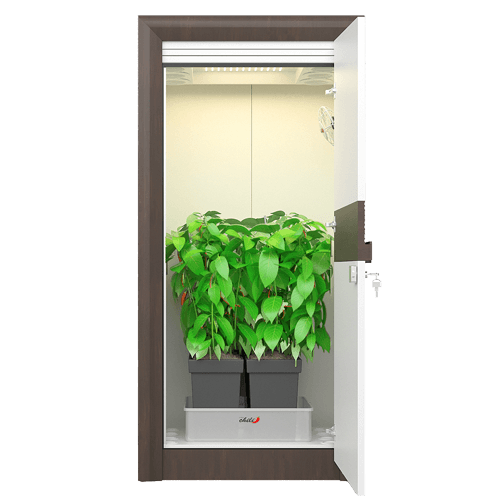 Growbox Komplettset der urban Chili Growschrank