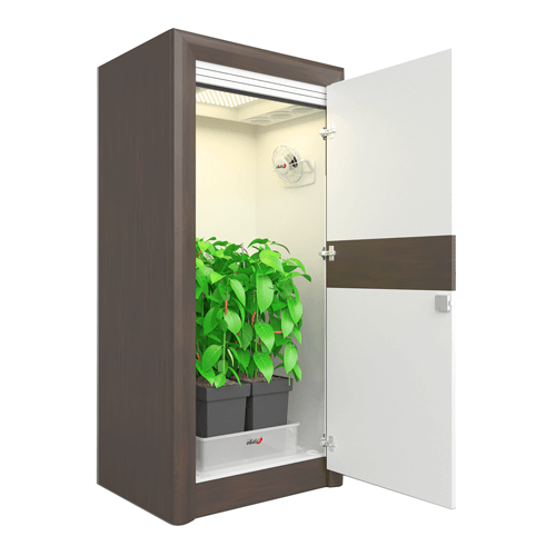 growbox komplettset – urban chili led growschrank 2.0