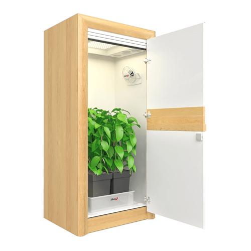 growbox urban Chili 2_0 LED growbox nature open S 500×500