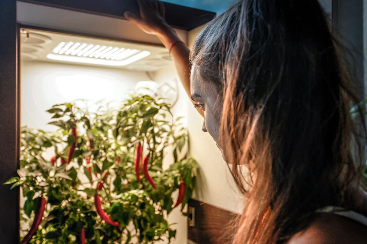 led growbox inside