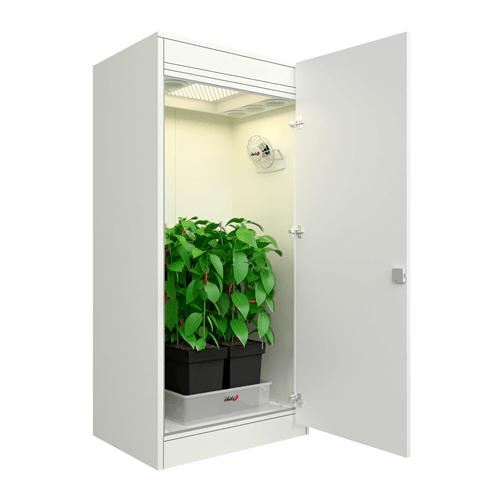 Growbox urban Chili light LED Growschrank
