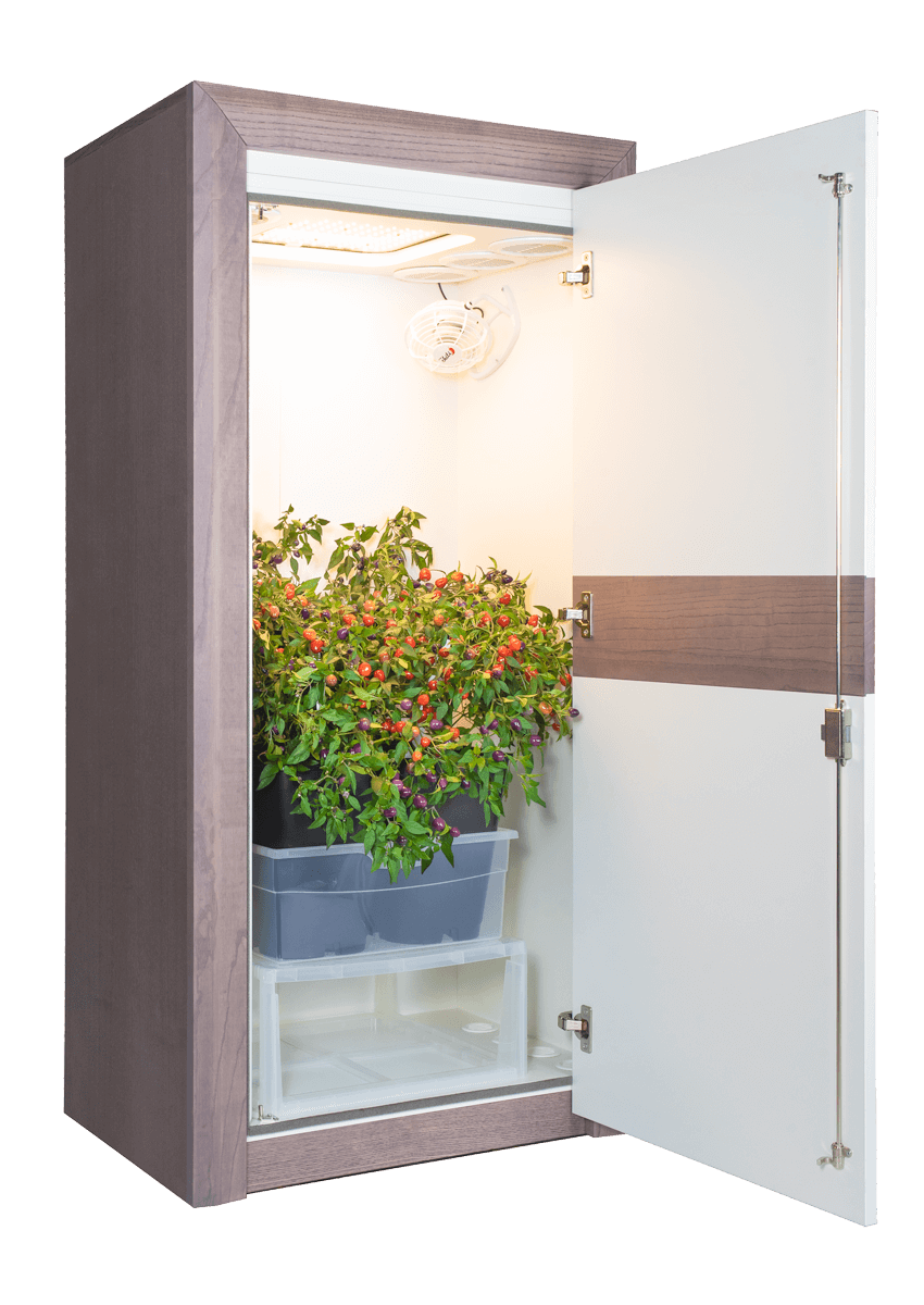 Growbox urban Chili 3.0 LED Growschrank classic offen 45