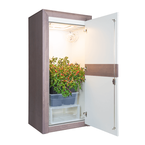 growbox urban Chili 3_0 LED growschrank classic open 45