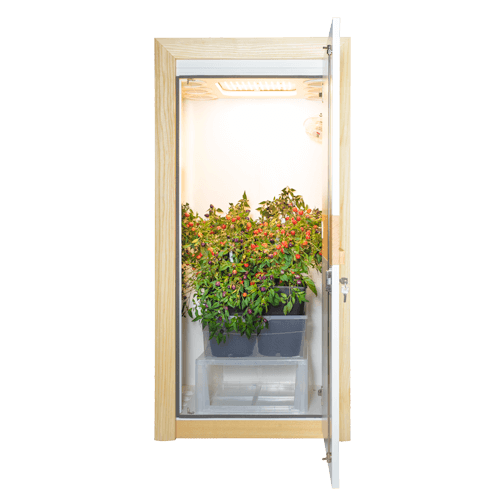 growbox urban Chili 3.0 LED growschrank nature line open