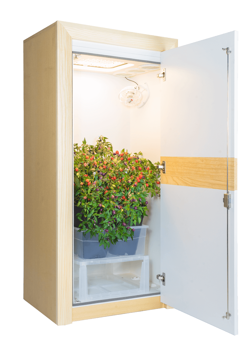 Grow Set urban Chili 3.0 LED Growschrank nature line offen 45