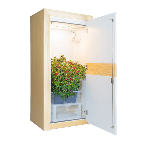 growbox urban Chili 3.0 LED growschrank nature line open 45