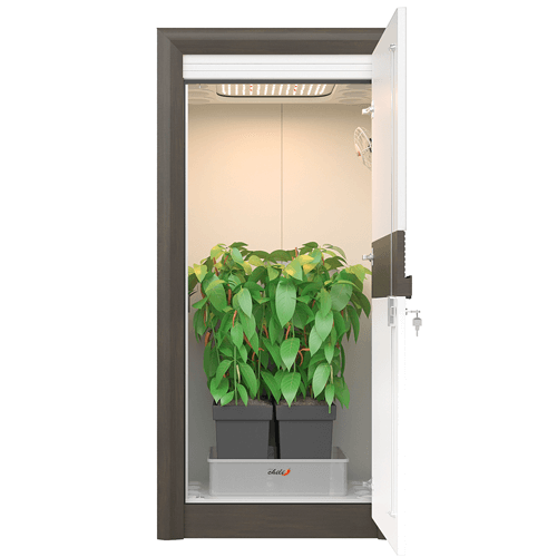 led grow cabinet
