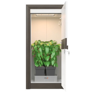 led grow box set - premium grow cabinet - urban Chili
