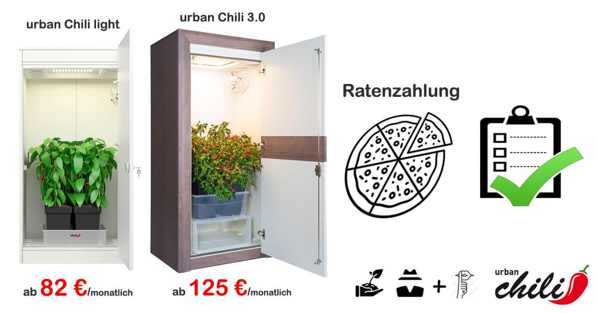 Growbox Ratenzahlung - urban Chili Growschrank Ratenkauf